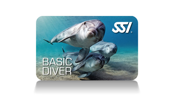 START SCUBA DIVING  SSI BASIC DIVER