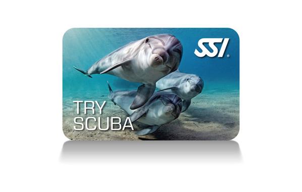 START SCUBA DIVING  TRY SCUBA (POOL)